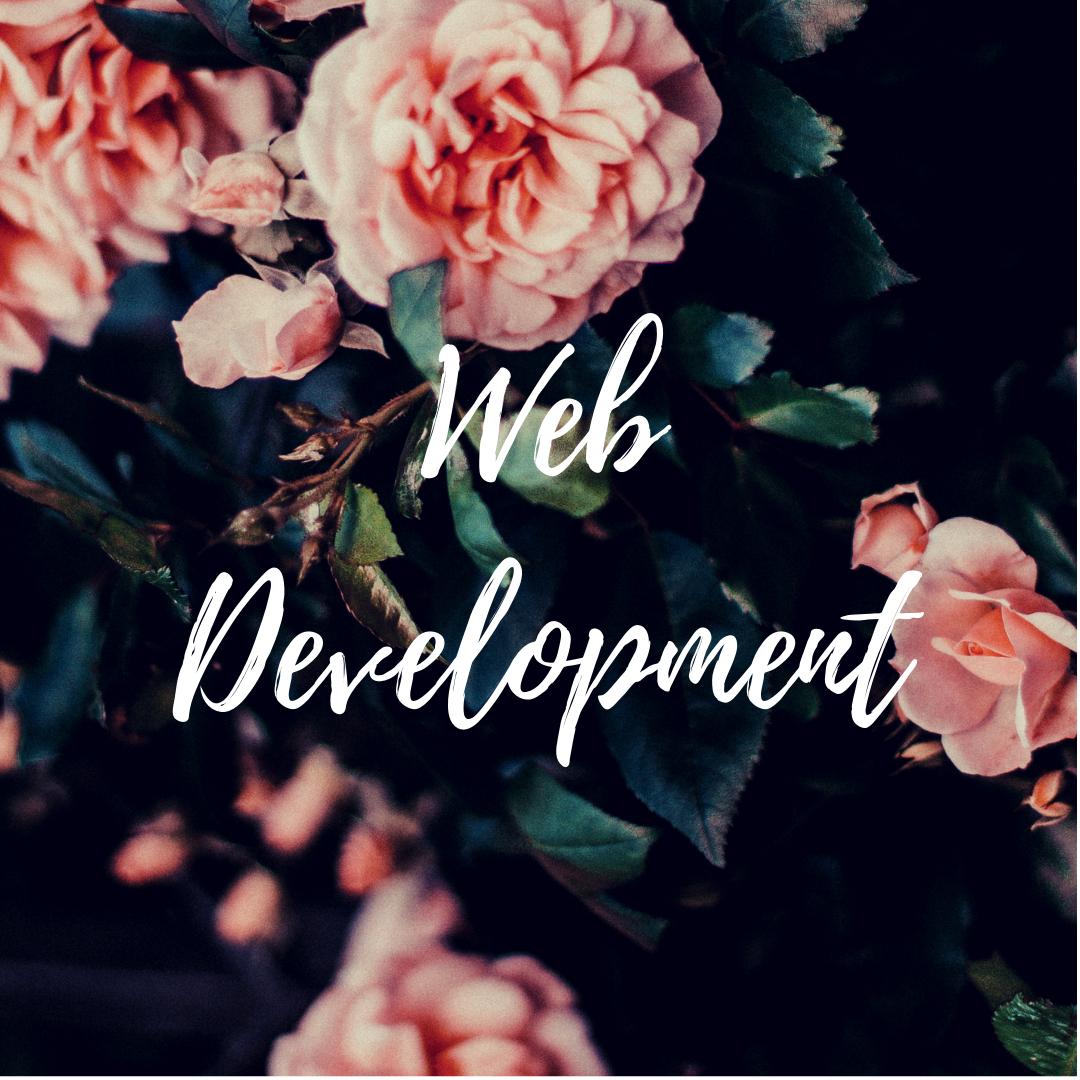 web development.png