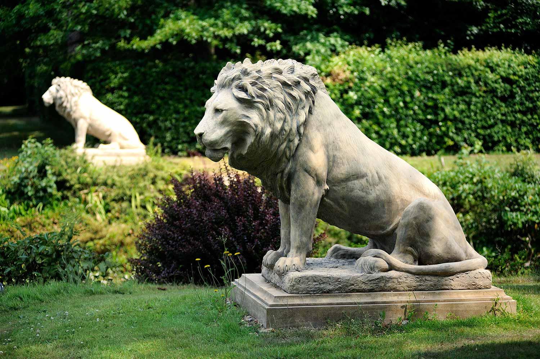 Empire Lions