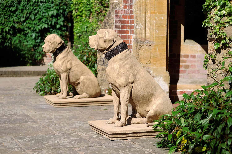 Dogs  08_final.jpg