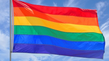Why Is My Daughter Gay? - by Alyse Knorr