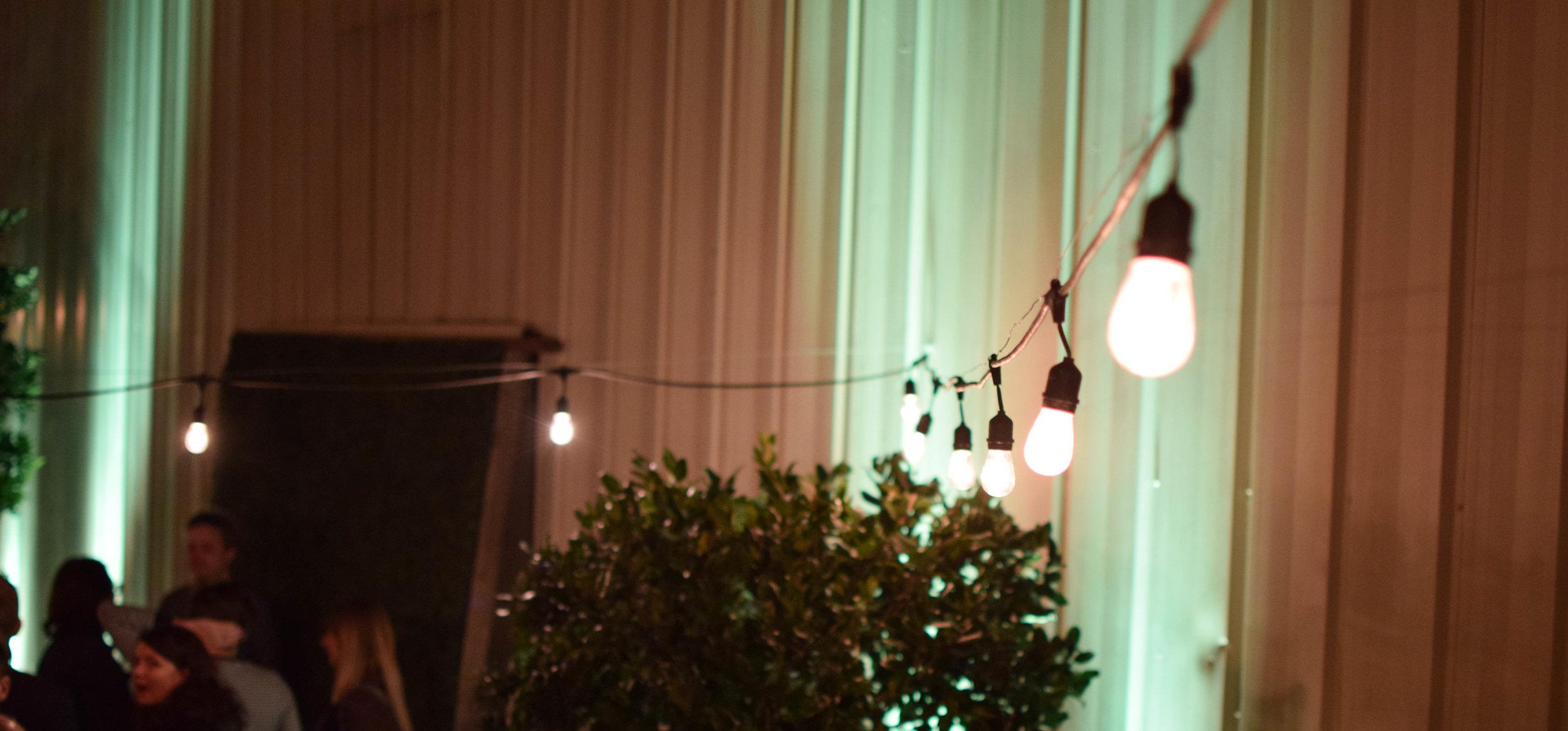 lights outside.jpg
