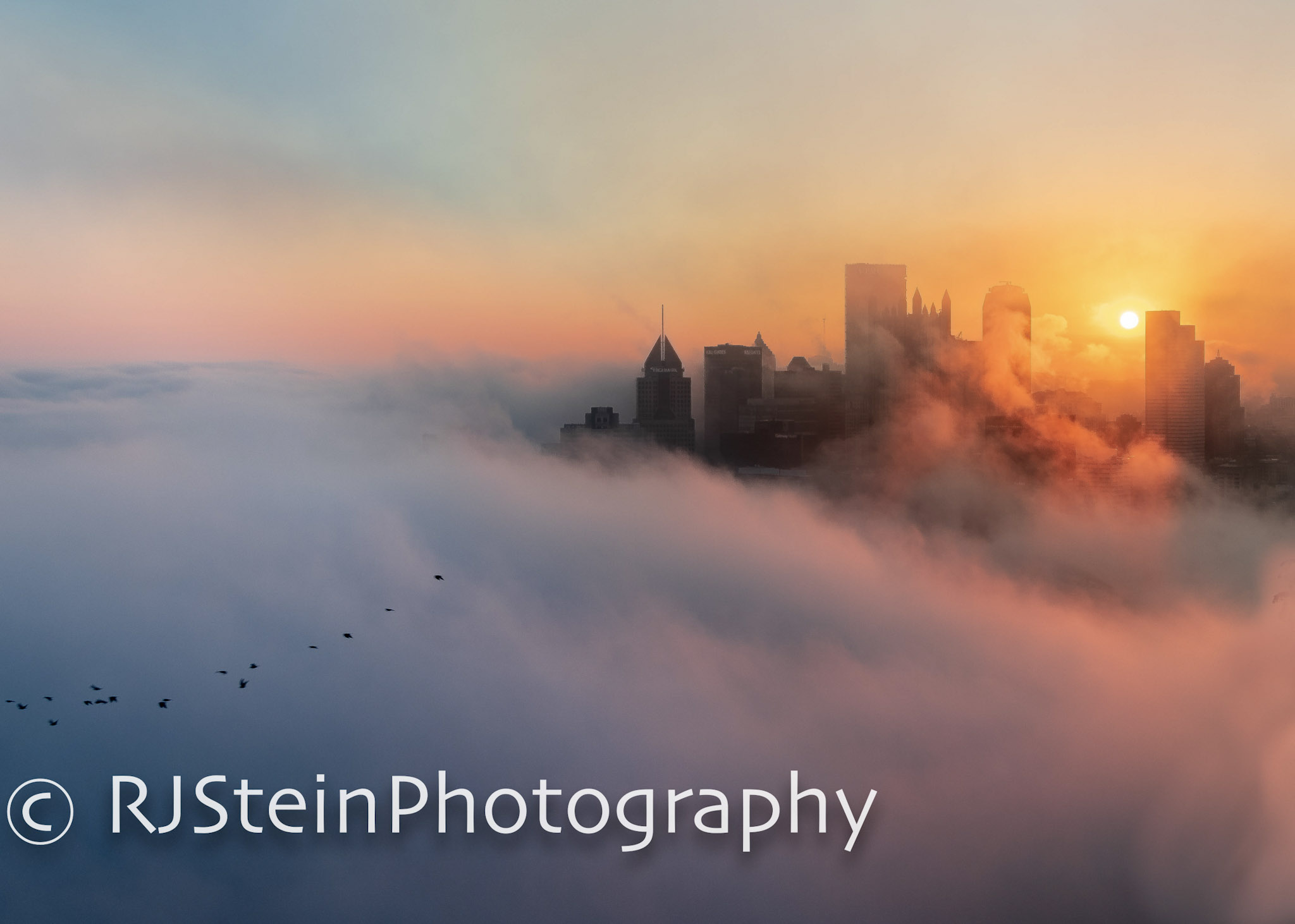 cloud city with birds, pittsburgh, 2018