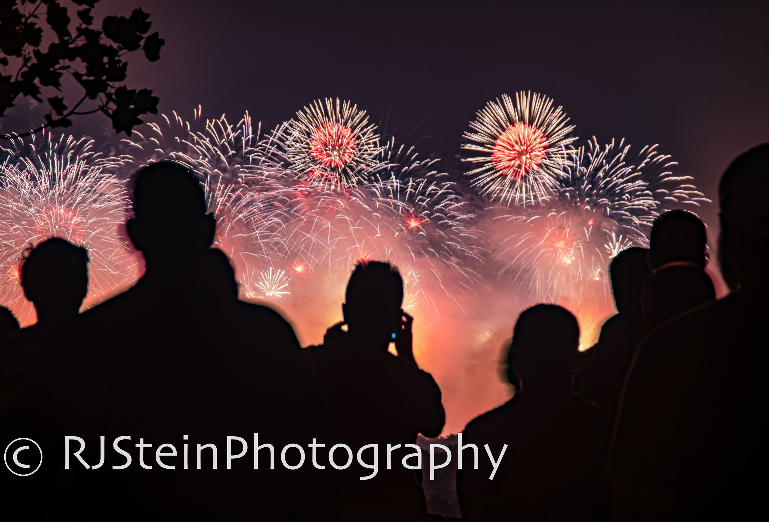 fireworks crowd, washington dc, 2019