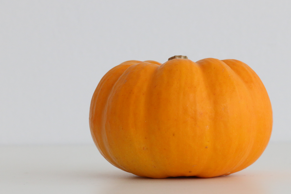 My reference picture for a pumpkin.