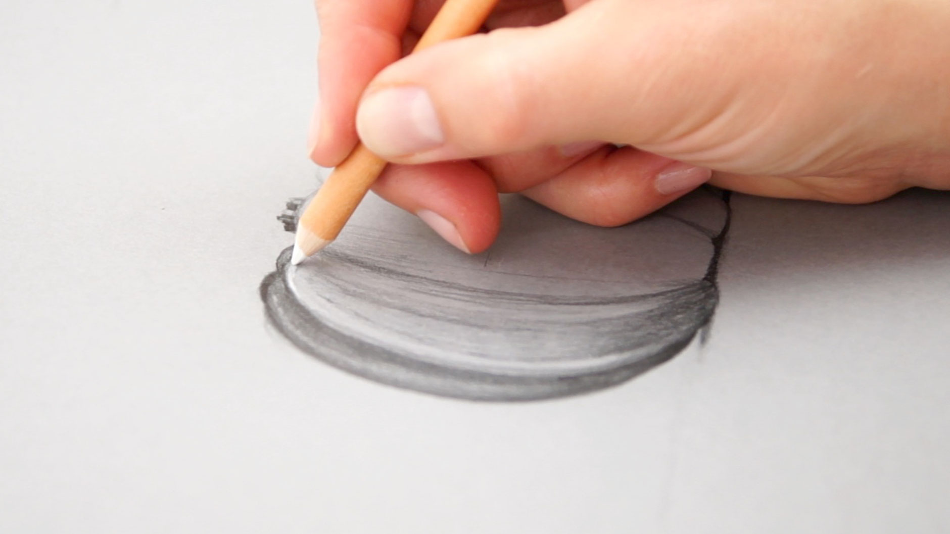 Then, I draw the details of the pumpkin in black and white pencil |  Drawing a Pumpkin and Creating a Sweater , by The Daily Atelier