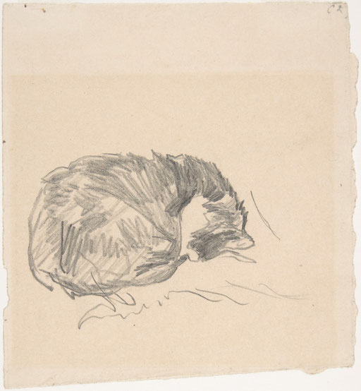 Édouard Manet,  A Cat Curled Up, Sleeping , 1861, Metropolitan Museum of Art, New York, Bequest of Clifford A. Furst, by exchange, 1995.