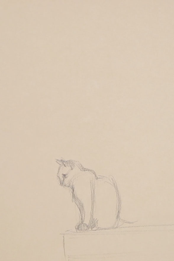 Sketch of the first cat    Sketching a Cat à la Manet , by The Daily Atelier