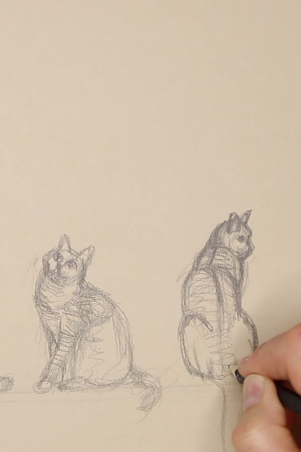 Sketch of the third cat, facing backwards    Sketching a Cat à la Manet , by The Daily Atelier