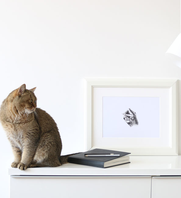 Framed drawing with the cat |  Drawing my own Hand with a Fountain Pen , by The Daily Atelier