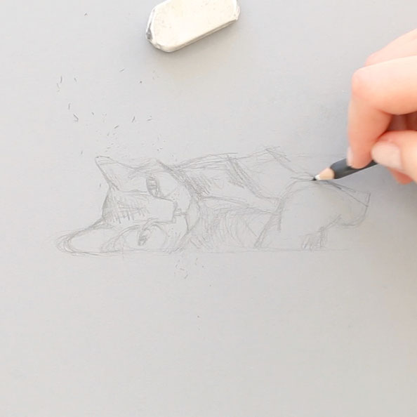 First, I sketch the cat with black pencil on grey paper |  Painting a Cat with Gouache , by The Daily Atelier
