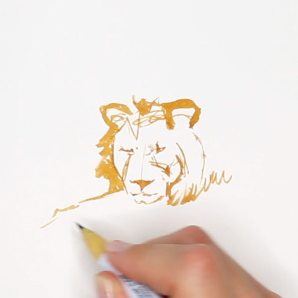 First, I sketch the lion's head |  Rembrandt and a Lion for my Sketchbook , by The Daily Atelier