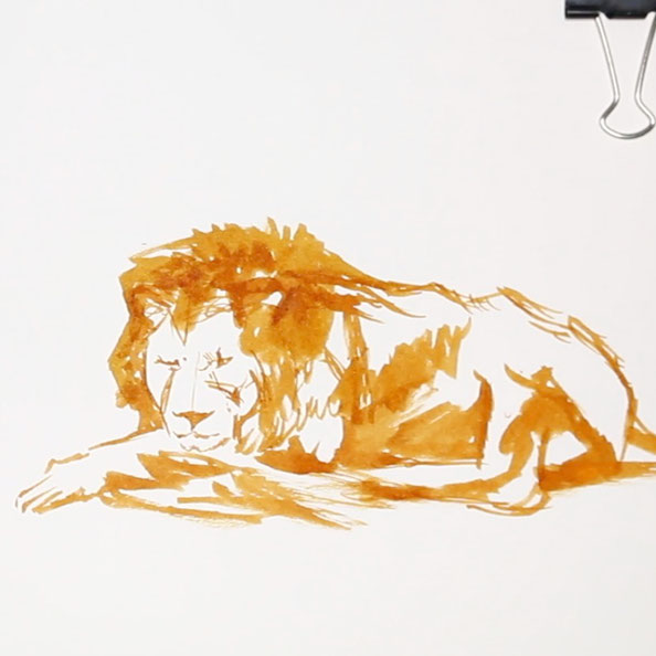 Secondly, I draw the lion with brown ink |  Rembrandt and a Lion for my Sketchbook , by The Daily Atelier