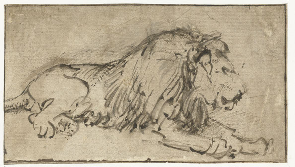Reclining Lion with Fodder , by Rembrandt Harmensz. van Rijn, c. 1660. Rijksmuseum, purchased with the support of the Vereniging Rembrandt.
