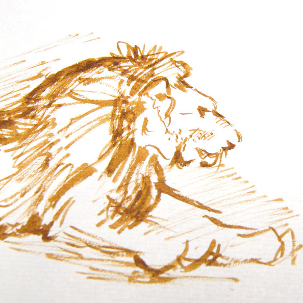 Secondly, I draw the entire lion … very quickly |  Rembrandt and a Lion for my Sketchbook (I) , by The Daily Atelier