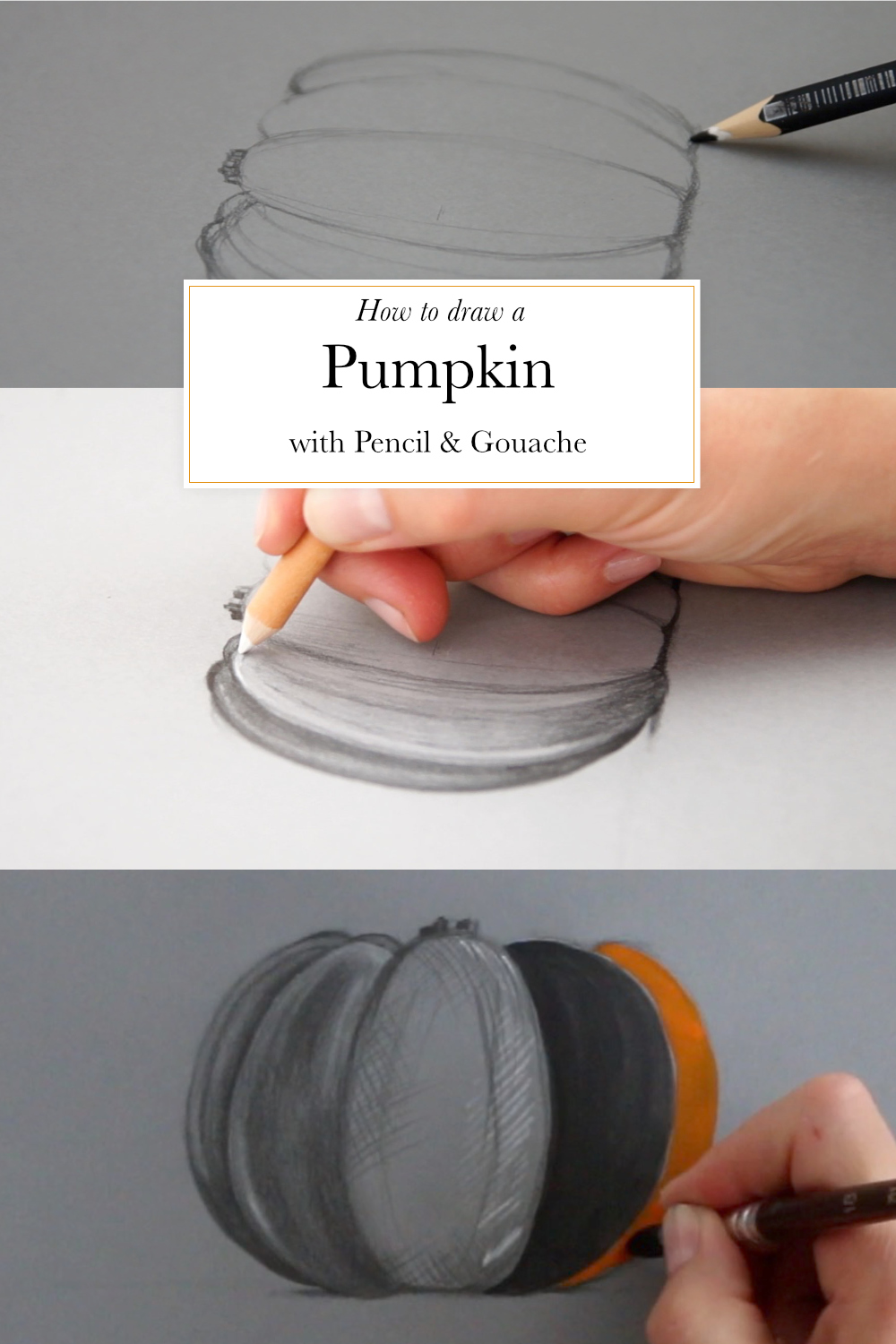How to draw a pumpkin with pencil and gouache | The Daily Atelier
