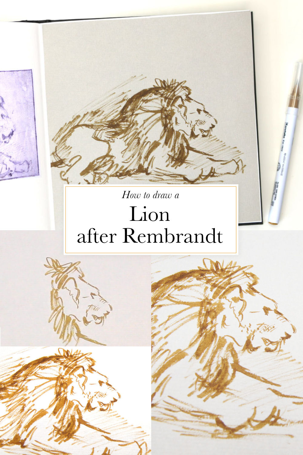 How to draw a lion after Rembrandt in my sketchbook  | by The Daily Atelier