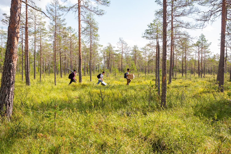 På väg över myr och genom skog