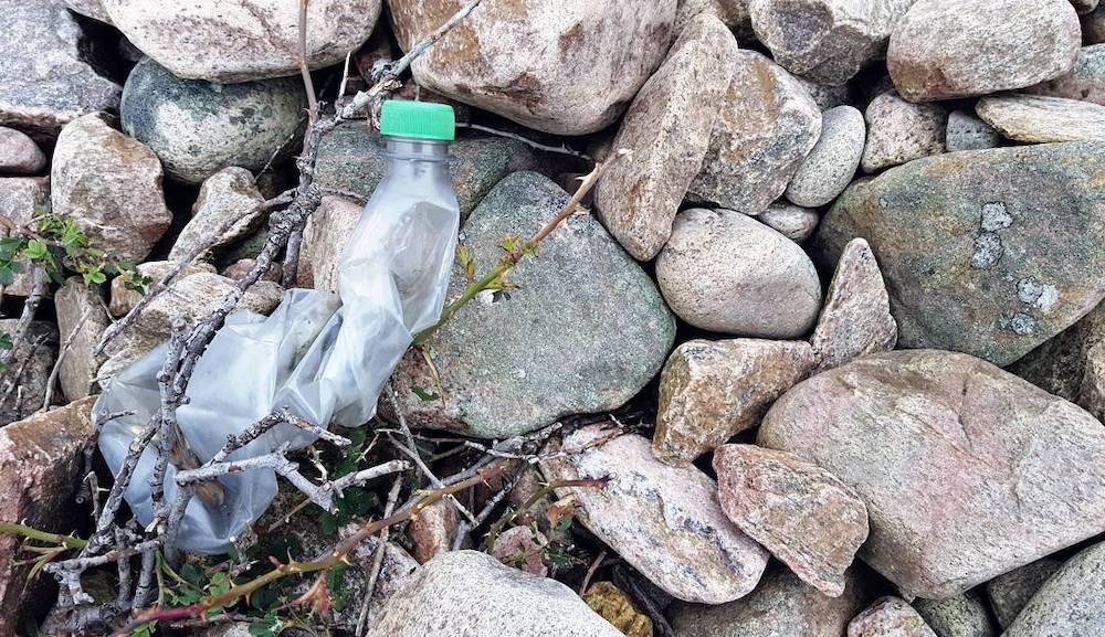 bottle.jpg