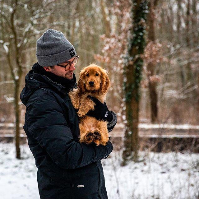 Eerste sneeuw! ❄️📸 #puppy @saarthecocker