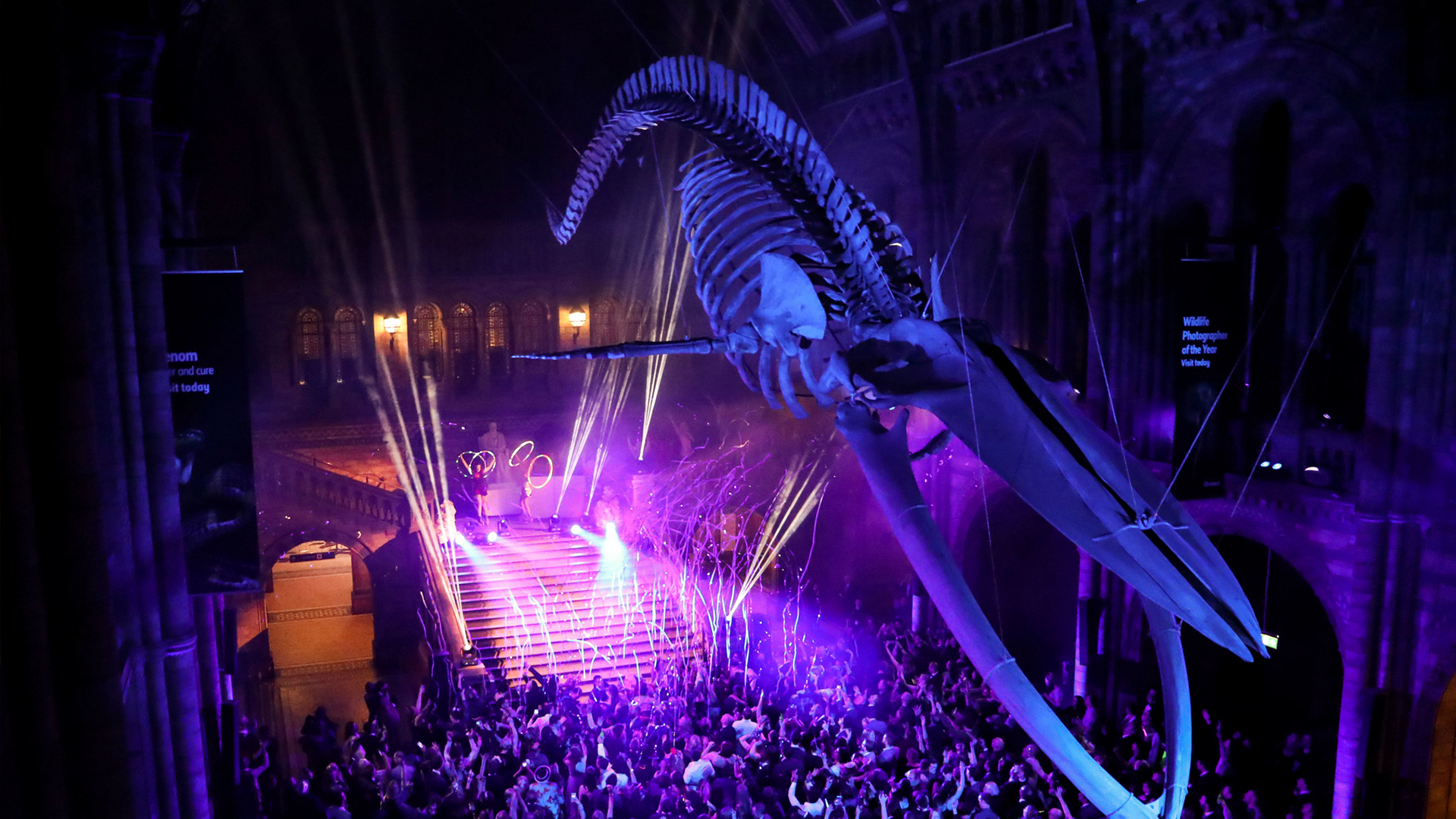 PARTY ANIMALS AT THE NATURAL HISTORY MUSEUM   Looking past Christmas- Who's ready to see in 2019 like a true party animal? Because the Natural History Museum are hosting an unBEARably exciting  shindig , underneath Hope the blue whale skeleton that dominates the entrance hall. Hosted in partnership with events company It's Unknown, there will be musical bingo, some insect canapes, a silent disco, animal themed activities, DJ, band, massaoke (big hits all sung by the crowd), plentiful drinks and basically a roarly good knees up. You can dress up all shmancy but with some elegant animal touches to fit in with the theme and explore the exhibitions on the night too if the massaoke is getting a little too loud. Tickets are from £89 and the evening kicks off at 8pm leaving you 4 hours of escapades before the clocks strike midnight. All is set to be a WILD night….we're not lion about that!  Facebook  |  Instagram  |  Twitter