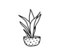 Annual Free Plant