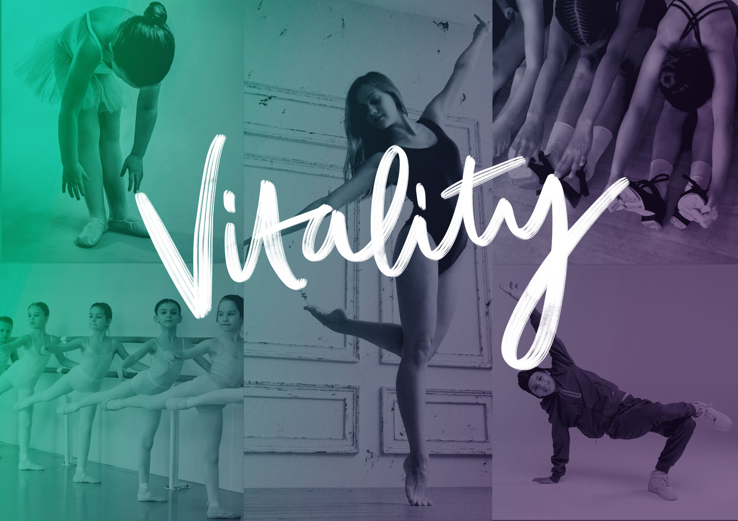 vitality banner 2.jpg