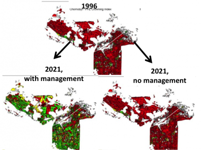 Maps of management opportunities to reduce fire danger in the Chernobyl Exclusion Zone. (Red = more flammable forests)