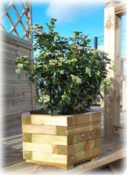 row-5-ranmore-planter.jpg
