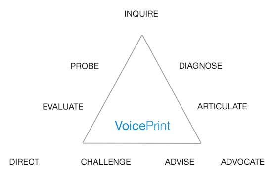 VoicePrint process diagram.