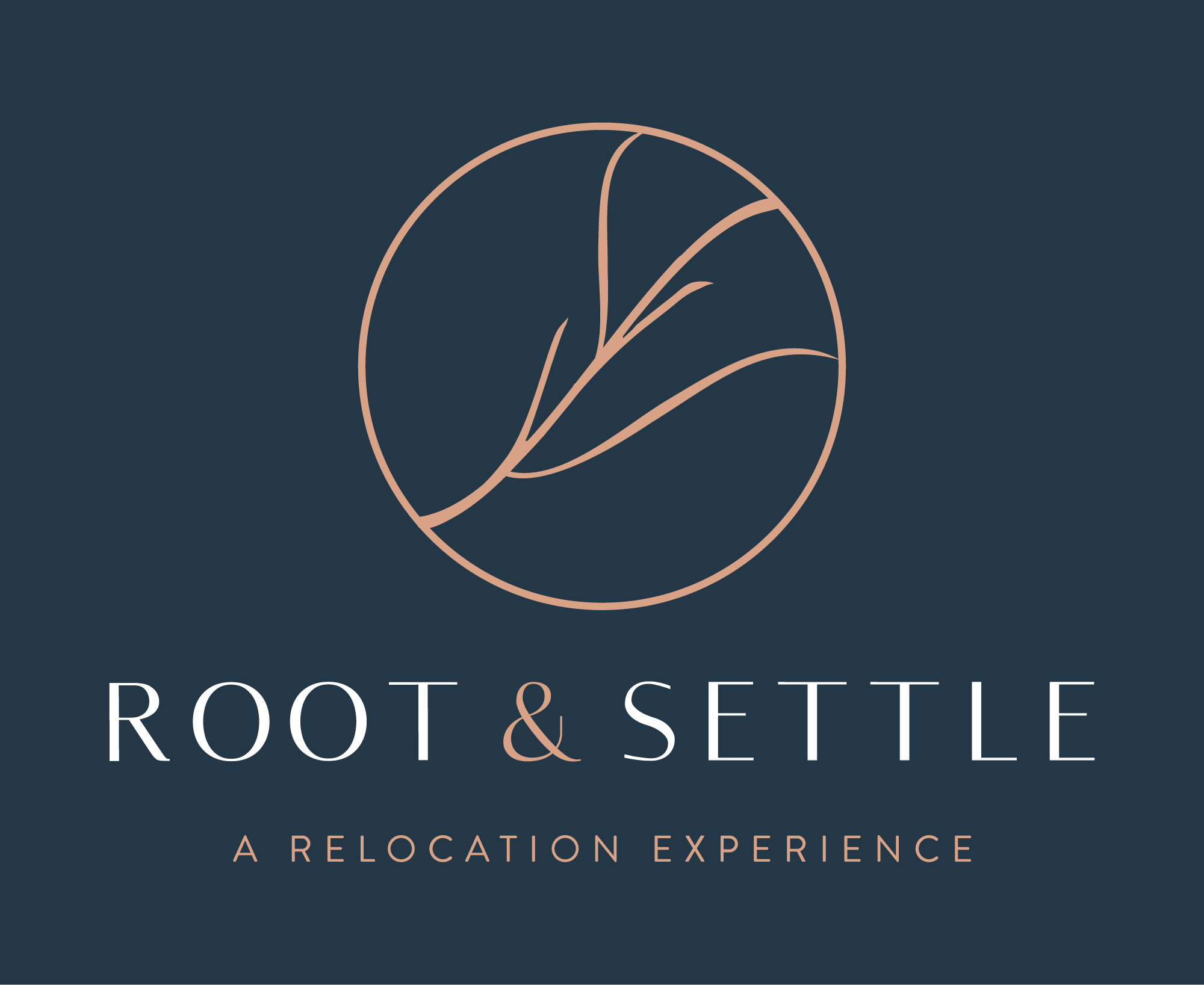 root-and-settle-miami-relocation-services