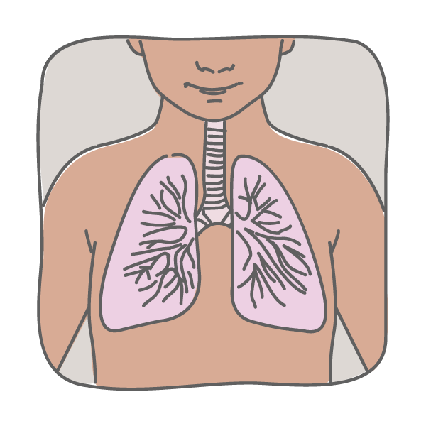 pulmonary clearance.png