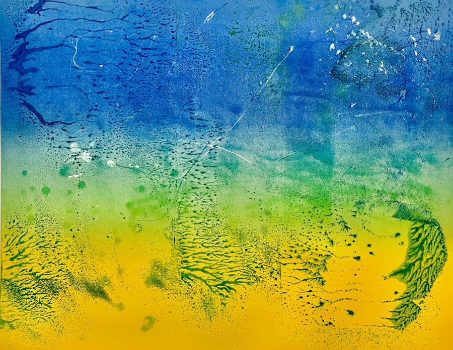 """Ocean 1, Ink on 22"""" X 30"""" BFK Rives paper, image size 19"""" X 24"""""""