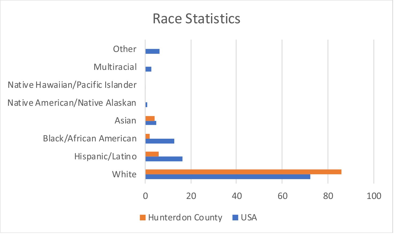 RaceStatistics.png