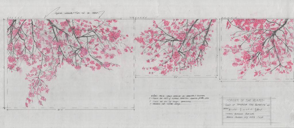 5 Coronation 2019 Cherry Blossoms431023d0.jpg