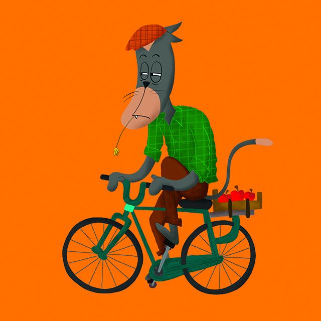 by bike/in bici