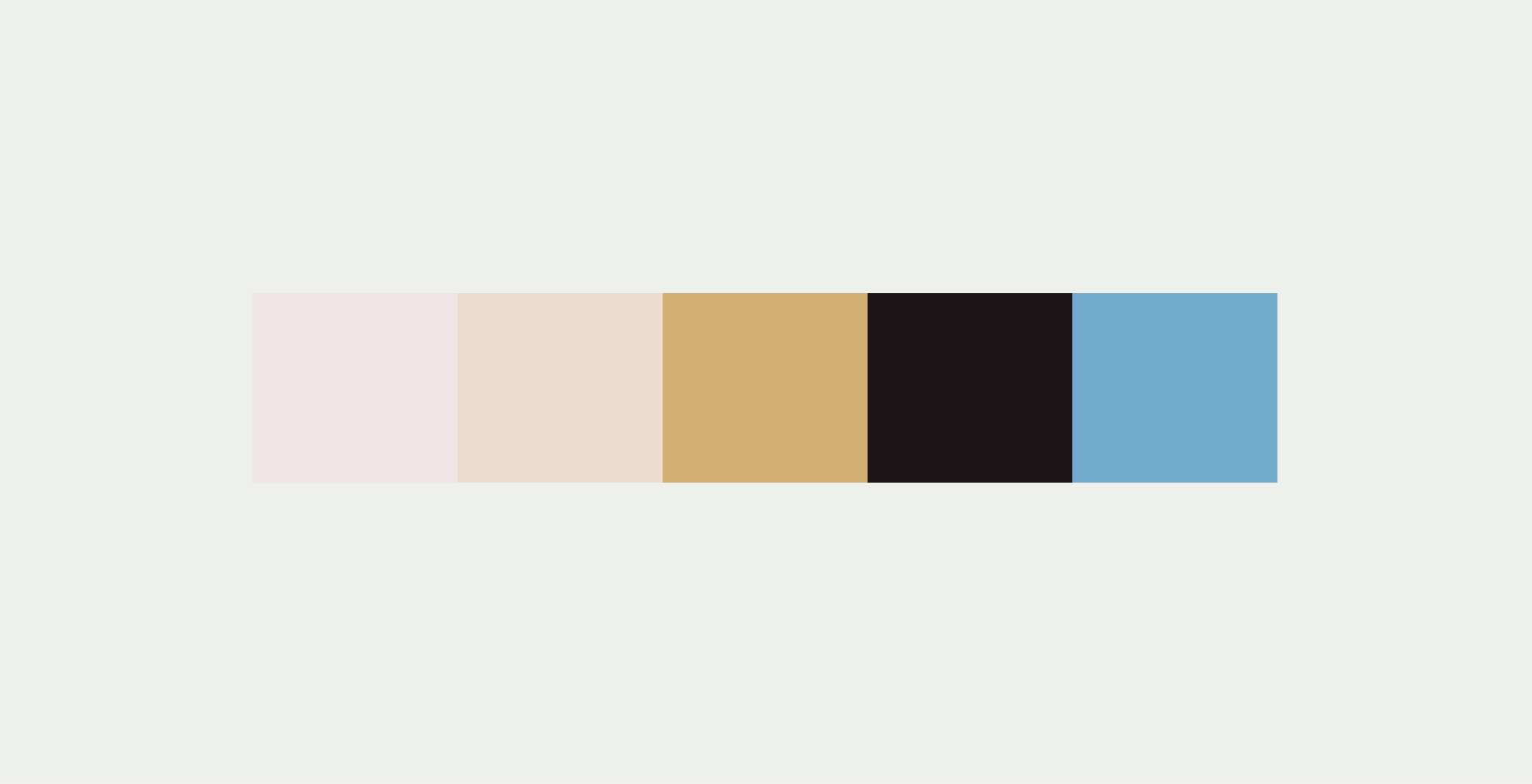 Palette | Seed Design Consultancy