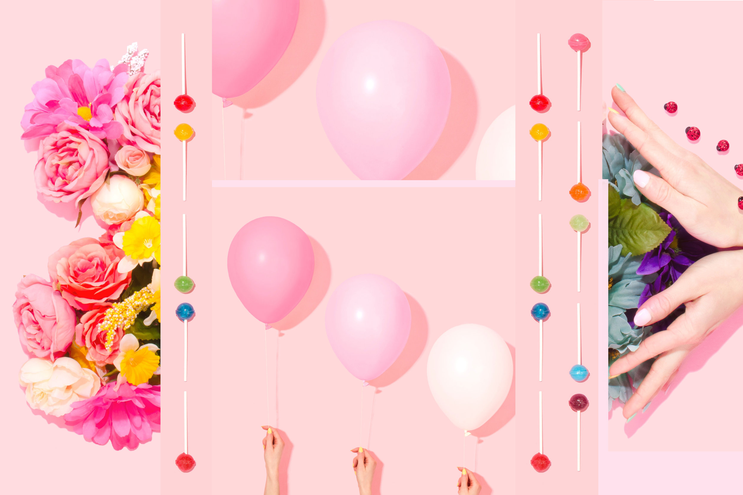 Celebrate, Not Sell | Seed Design Consultancy