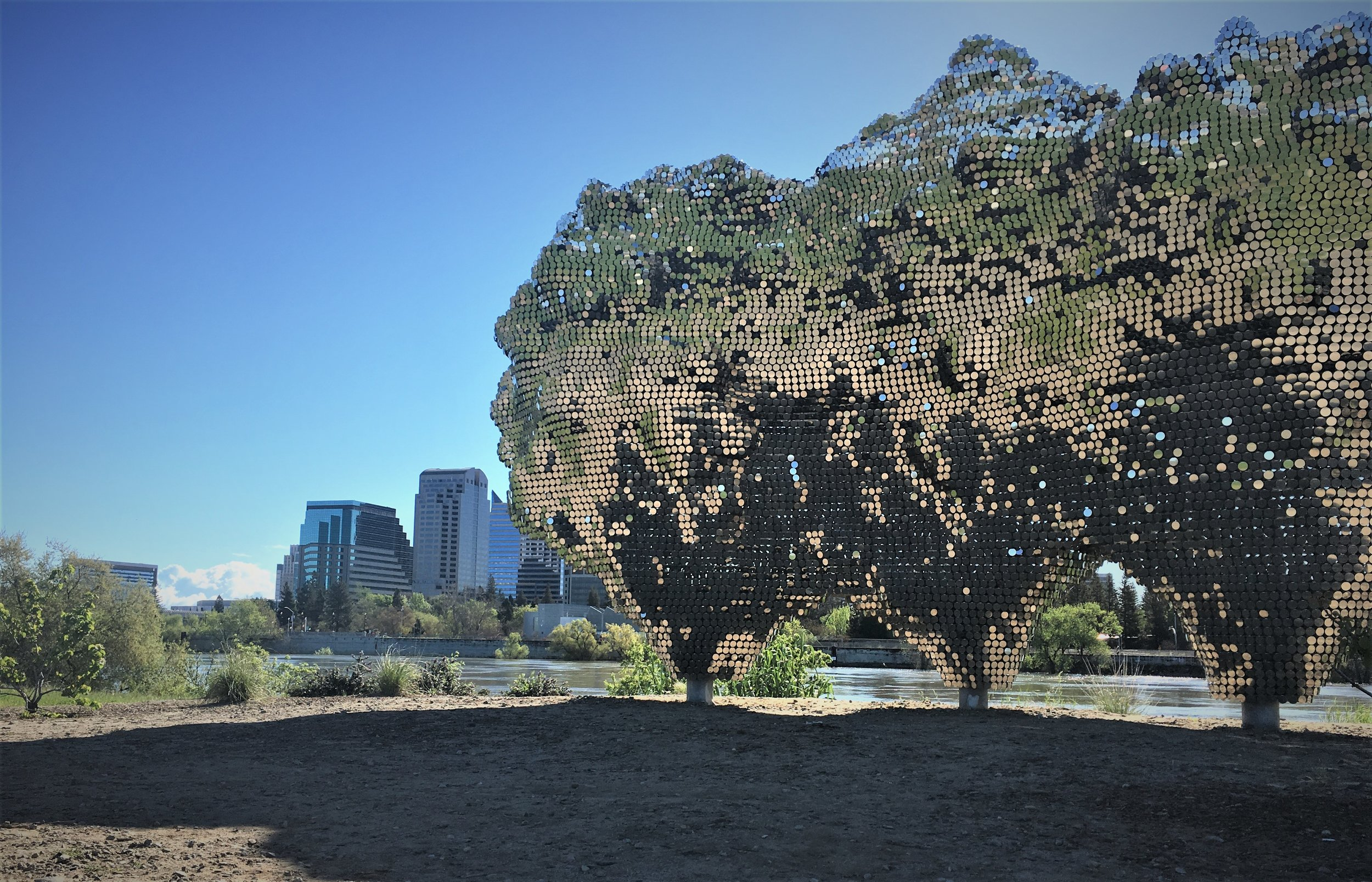 """The newest piece of public art along the River Walk. """"Subtile"""" is a shimmering and towering sculpture by Czech artist Federico Diaz. The $500,000 piece is the emerging artist's first outdoor public art piece."""