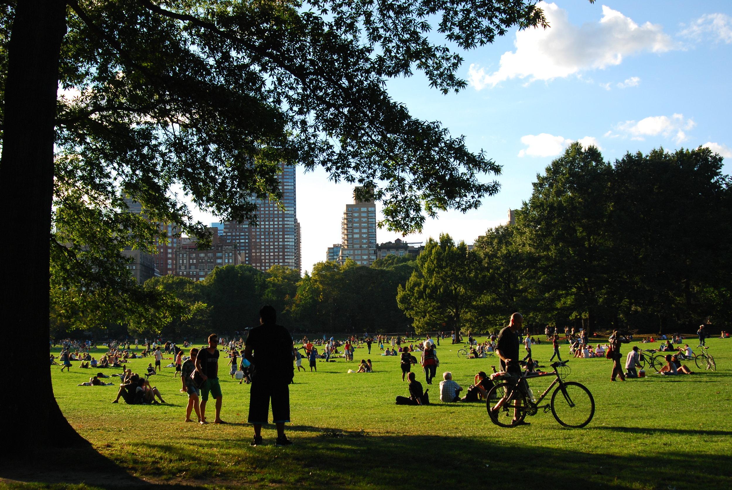 Sept. 9, 2012- NYC upper (73).JPG