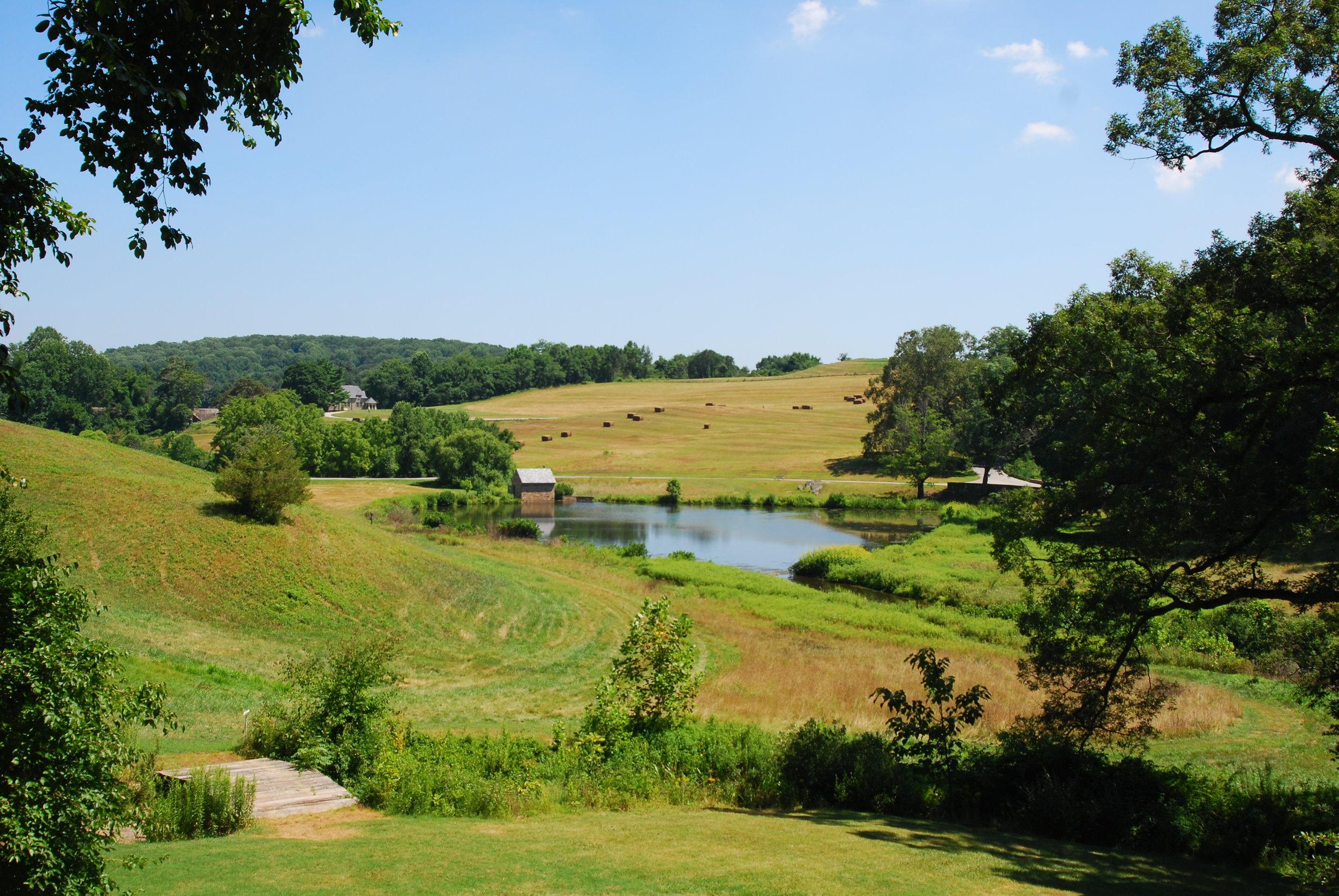 July 26, 2011- Roadtrip (DW, PA, NJ Gardens) (66).JPG
