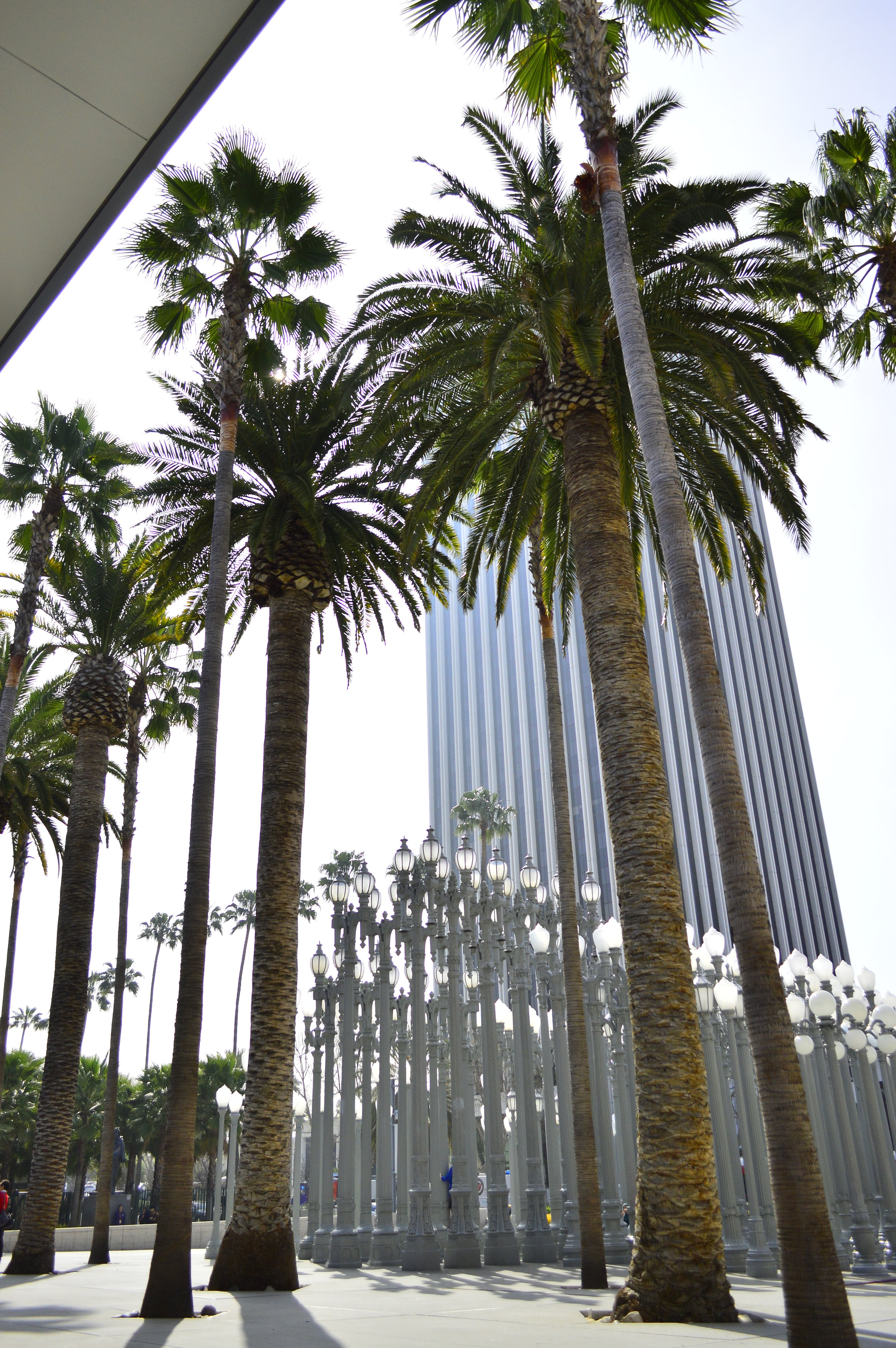 Mar. 16, 2013- LA (7).JPG