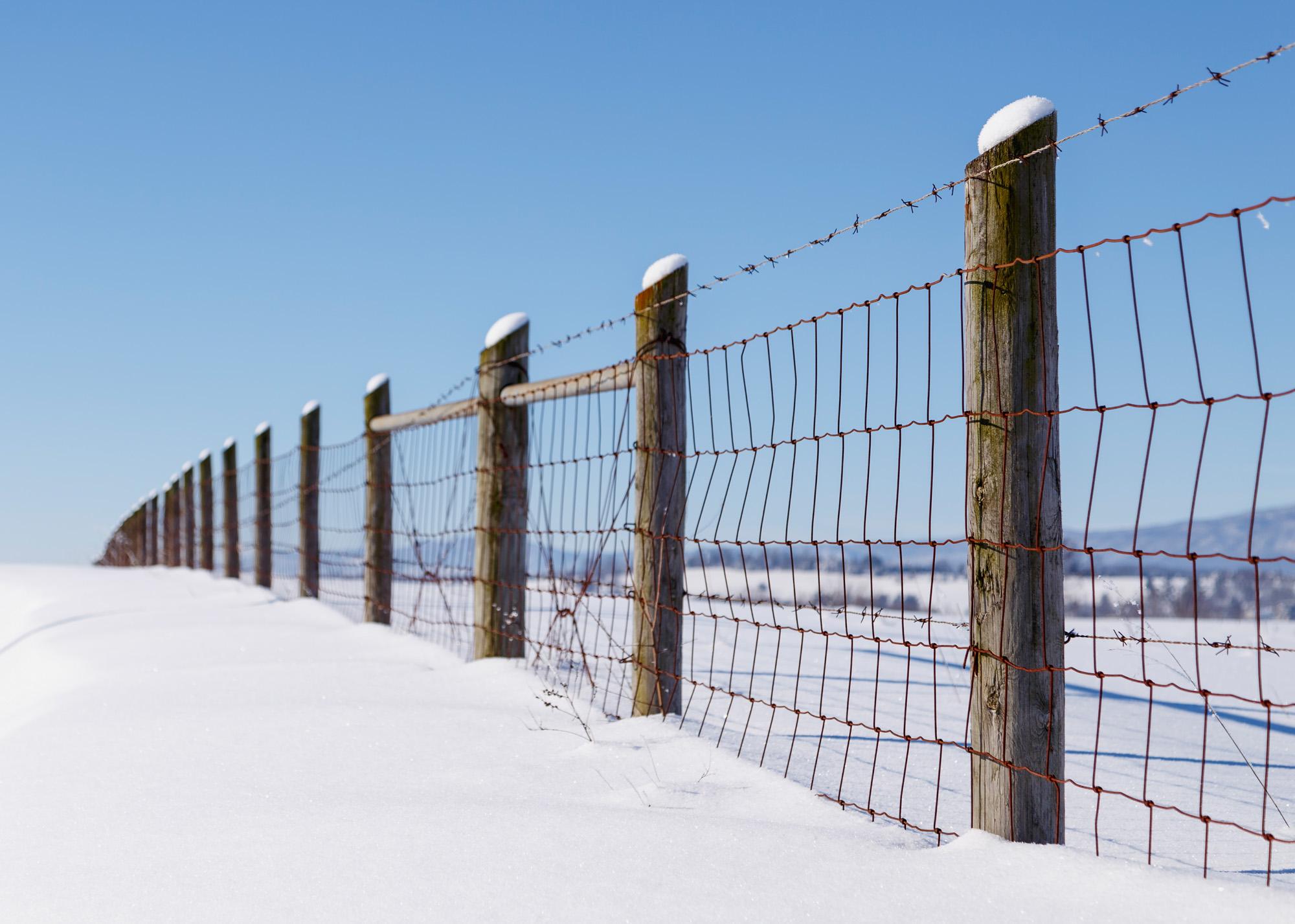 _MG_5593_Fence.jpg