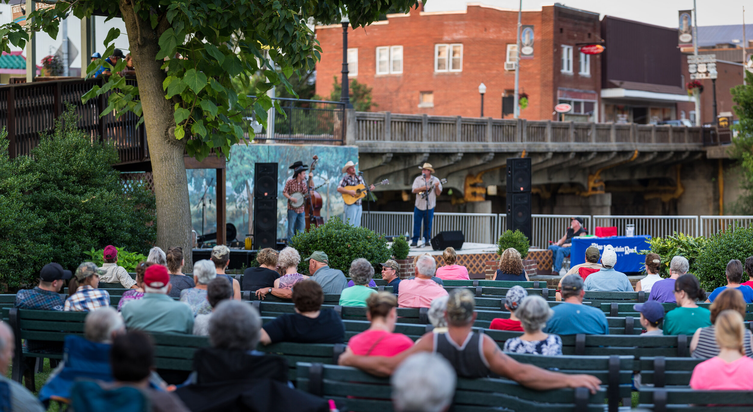 2016728.Luray Outdoor Concert-5 copy.jpg