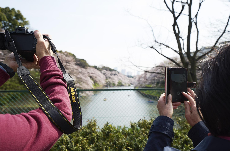 cameras copy.jpg