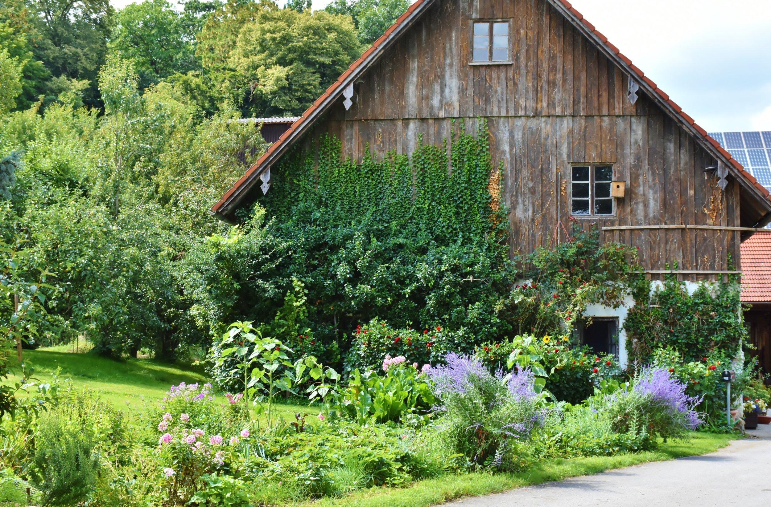 daylight-farm-farmhouse-158228.jpg