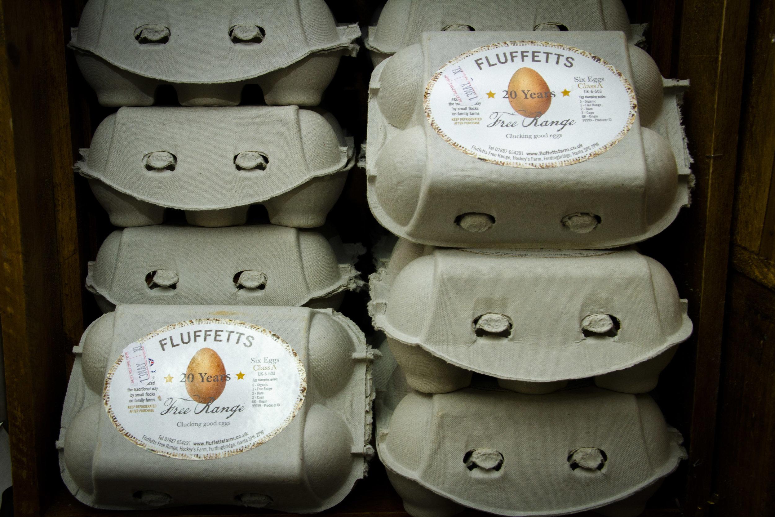 Fluffetts Eggs.jpg