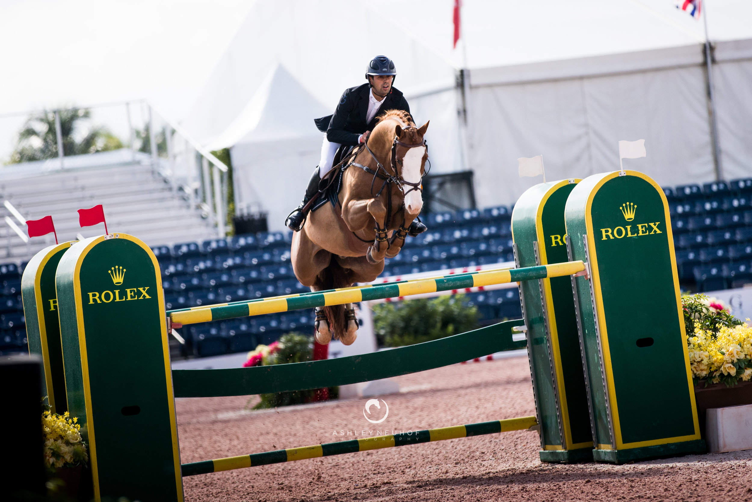 Nayel Nassar and Lutz at Winter Equestrian Festival 2019. Photo by Ashley Neuhof Photography.