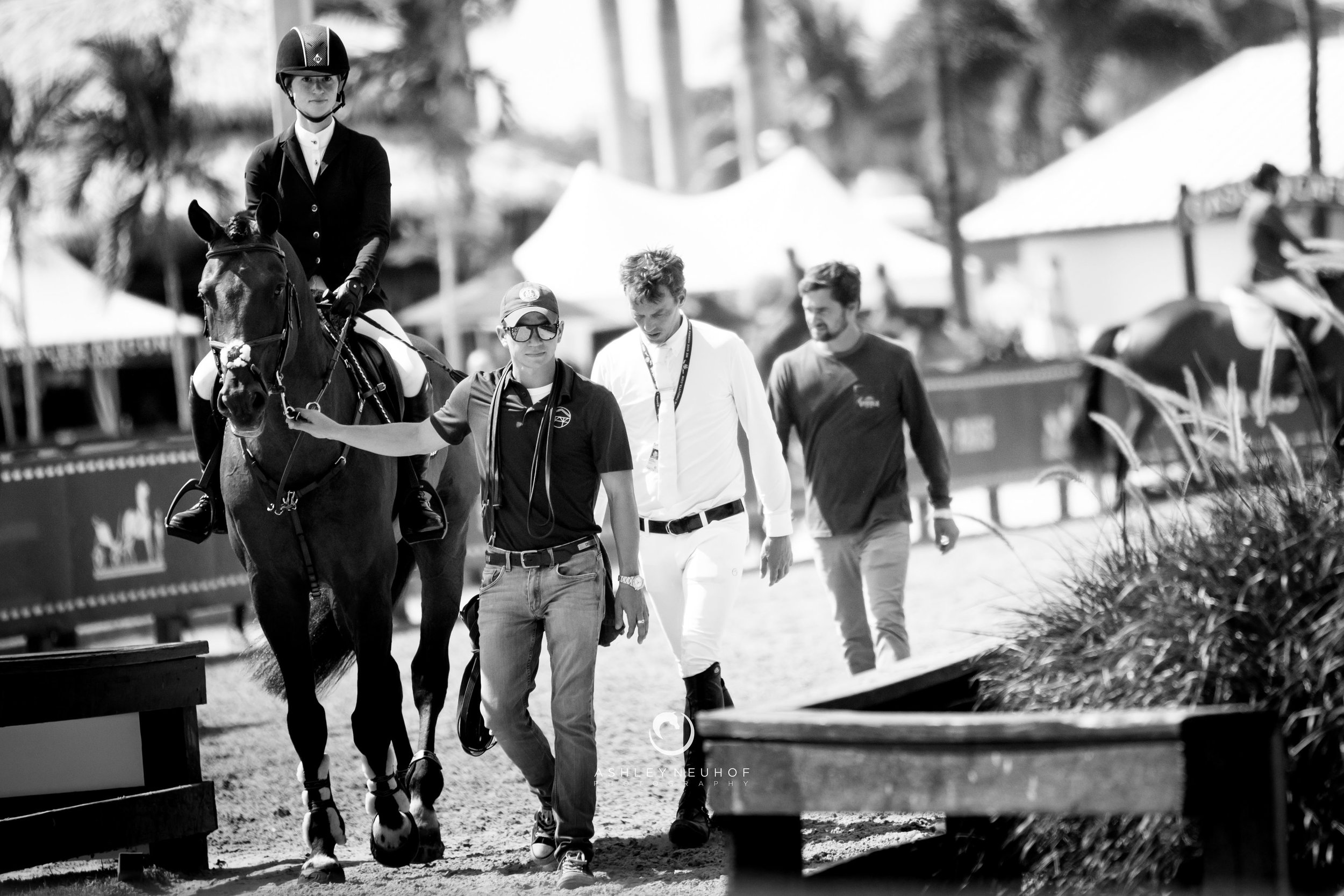 Jenn Gates and Capital Colnardo with the Evergate Stables Team at Winter Equestrian Festival 2019. Photo by Ashley Neuhof Photography.