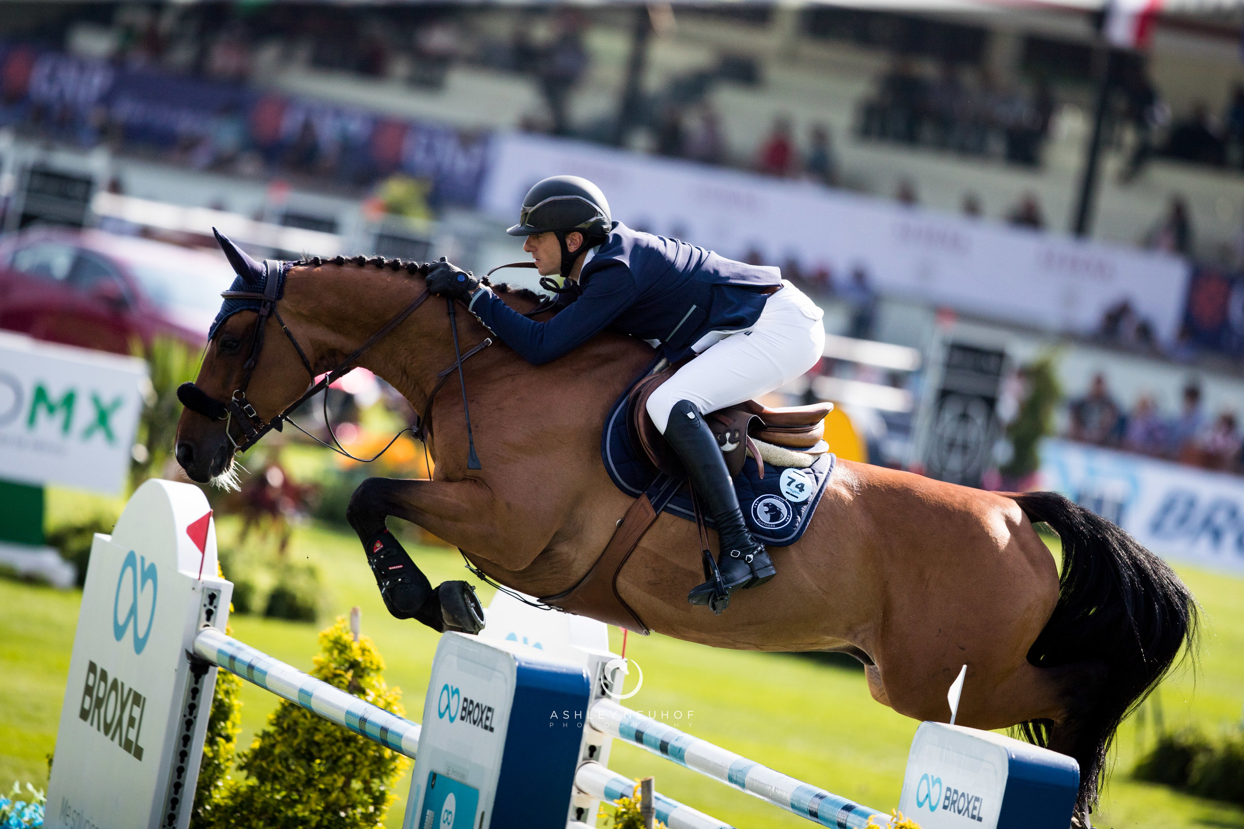 Gregory Wathelet and Qualido 3 at Global Champions League of Mexico City 2019. Photo by Ashley Neuhof Photography.