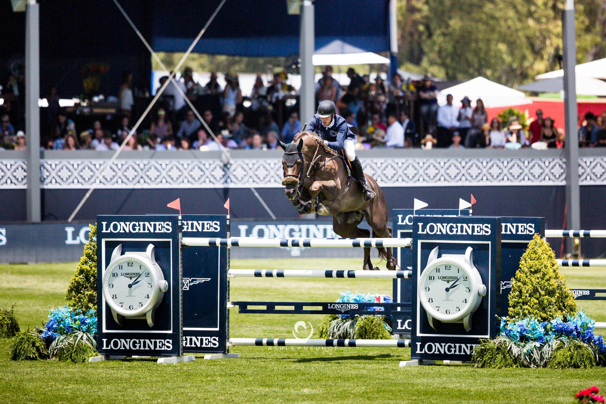 Harrie Smolders and Don VHP Z N.O.P. at Global Champions League of Mexico City 2019. Photo by Ashley Neuhof Photography.
